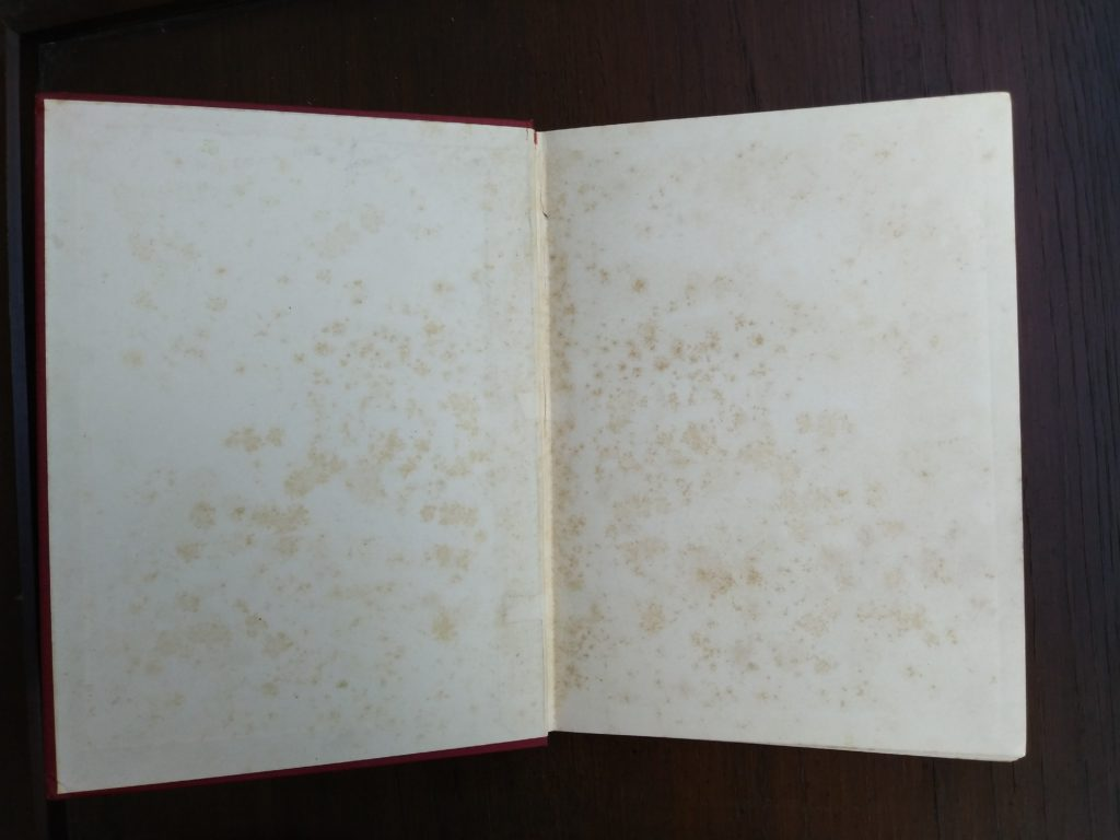 1902 Antique book Just So Stories, some foxing inside paste down and endpaper