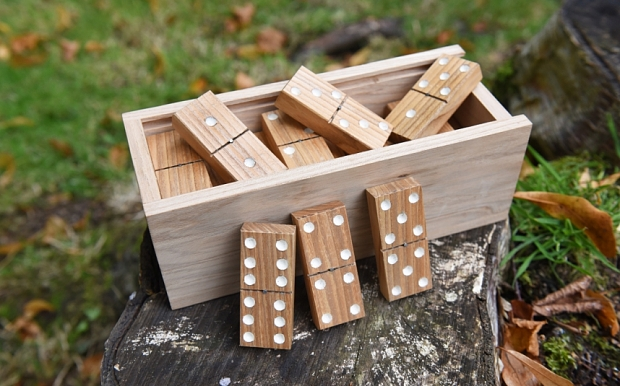 A set of wooden dominoes made from an ash tree