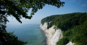 looking out from under a shade of a tree at the sea up high on a cliff edge