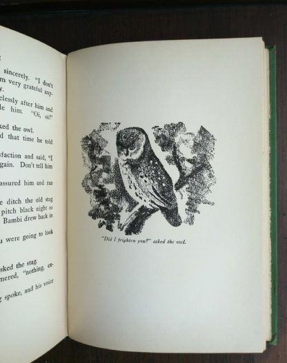 An illustration by Kurt Wiese of an owl on page 221 in a 1928 copy of Bambi A life in the Woods