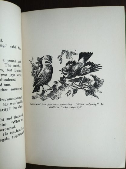 An illustration by Kurt Wiese on page 25 in a 1928 copy of Bambi A life in the Woods