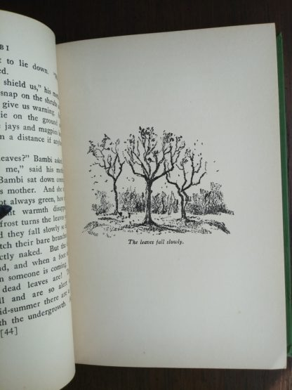 An illustration by Kurt Wiese on page 45 in a 1928 copy of Bambi A life in the Woods