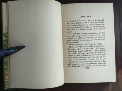 Page 13 in a 1928 First American Printing of Bambi A Life in the Woods