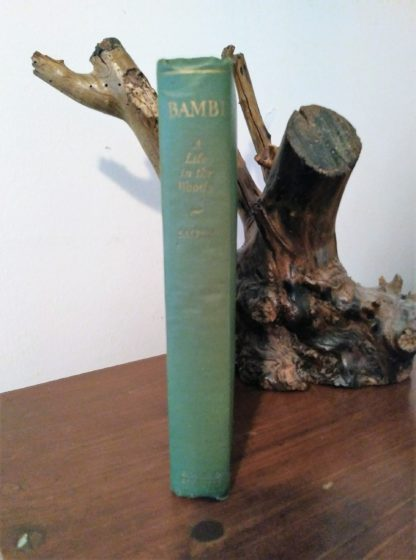 Spine view of a July 1928 First American Printing of Bambi A Life in the Woods
