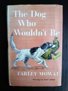 Front cover with dust jacket of the novel, The Dog Who Wouldnt Be, 1957, 4th edition, by Farley Mowat