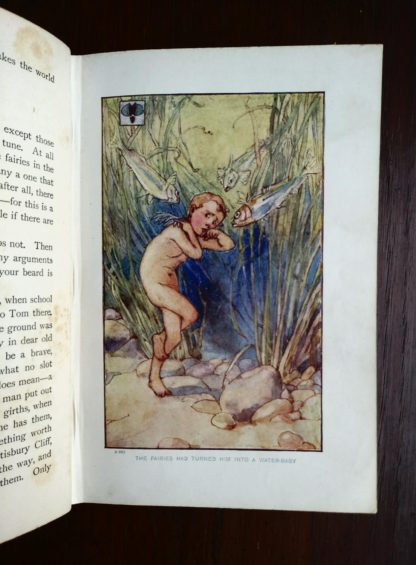 Color plate illustration inside an undated library copy of The Water-Babies by Charles Kingsley published by Blackie and Sons