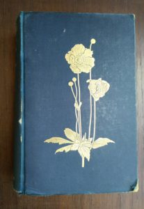 front cover of English Flower Garden by W. Robinson 1913 twelfth edition