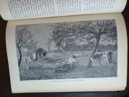 picture by Mark Fisher in the book English Flower Garden by W. Robinson 1913 twelfth edition