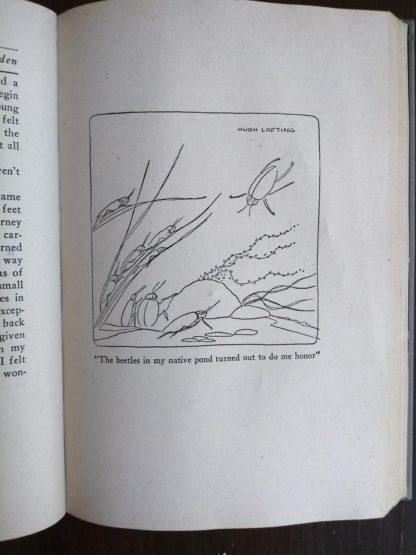 Doctor Dolittles Garden by Hugh Lofting 1927 Eighth Impression illustration of beetles