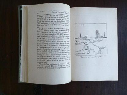 Doctor Dolittles Garden by Hugh Lofting 1927 Eighth Impression illustration on page 17