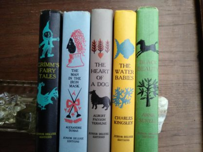 popular titles from childrens Junior Deluxe Editions Collection, Circa 40s -50s spine view up close