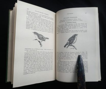 1927 Manual of British Birds 3rd edition Howard Saunders and W. Eagle Clarke page 236 and 237