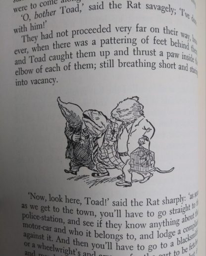 1954 copy of The Wind in the Willows illustrated by Ernest Shepard illustration up close on page 40