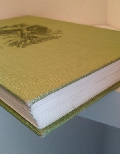 The Wind in the Willows 1961 Golden Anniversary Edition edges of binding