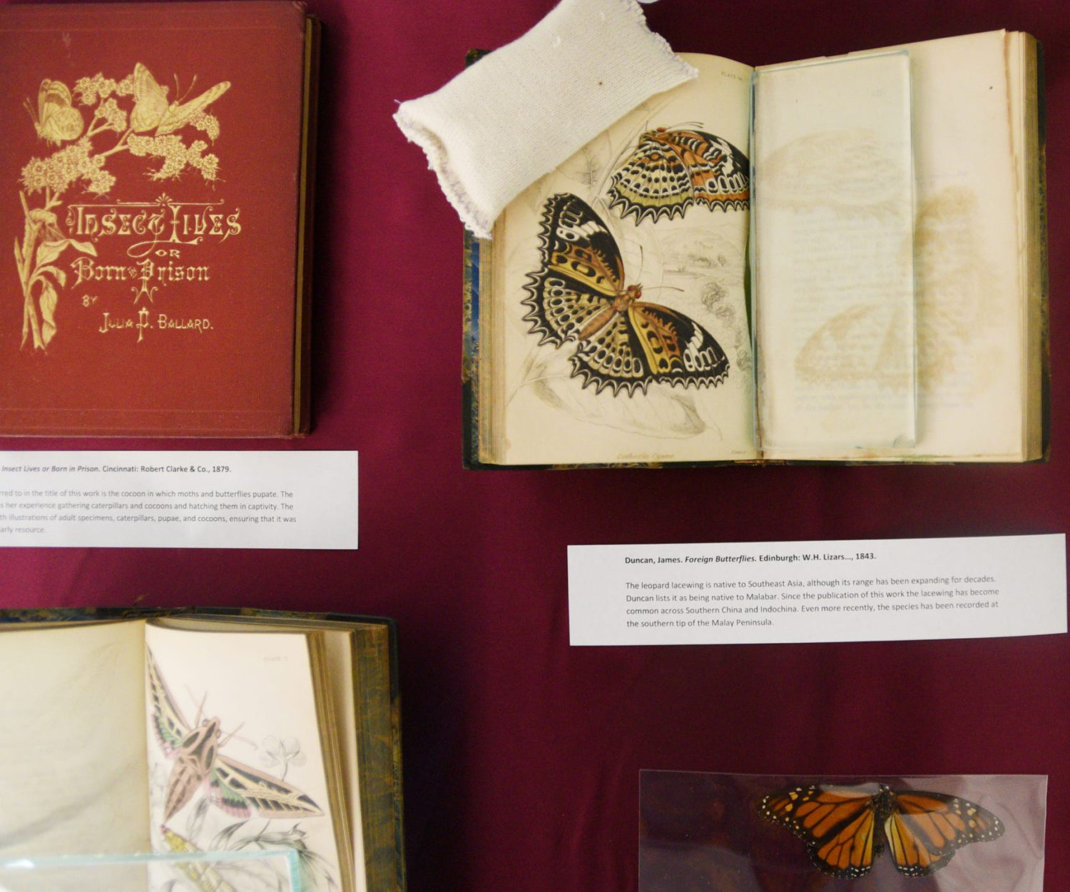A book from Noel Memorial Librarys rare book collection current exhibition