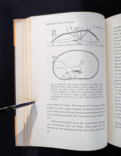 1954 First American Edition copy of The Natural History of Mammals by François Bourlière page 92