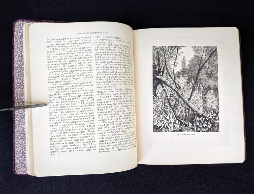 a illustration titled The Unknown Land in a 1888 copy of Parables from Nature by Margaret Gatty -First and Second series in one volume