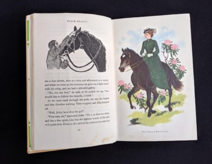 colour illustration of Black Beauty at Birtwick Park in a 1949 copy of Black Beauty by Anna Sewell - The Heirloom Library - first printing