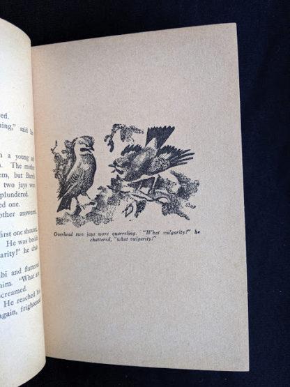 illustration by Kurt Wiese in a 1929 copy of Bambi by Felix Salten published by Grosset & Dunlap