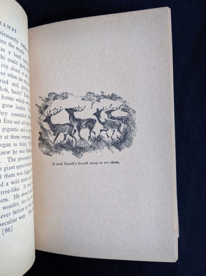 illustration in a 1929 copy of Bambi by Felix Salten published by Grosset & Dunlap