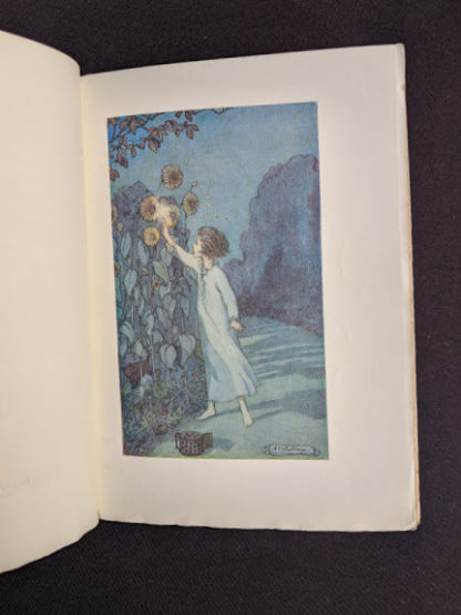 1915 copy of Marys Meadow and Other Tales of Field Flowers by Juliana Horatia Ewing - illustration by M.V. Wheelhouse