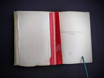 hinge badly repaired with tape inside a 1915 copy of Marys Meadow and Other Tales of Field Flowers by Juliana Horatia Ewing
