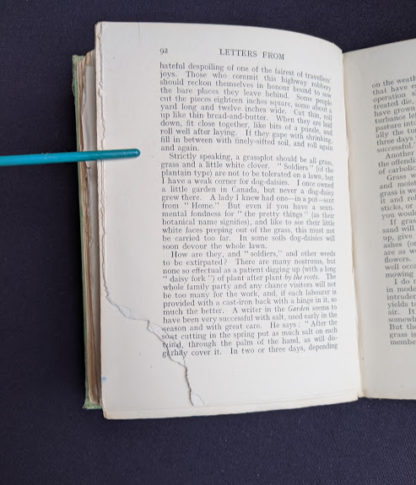 page 89 to 92 torn inside a 1915 copy of Marys Meadow and Other Tales of Field Flowers by Juliana Horatia Ewing