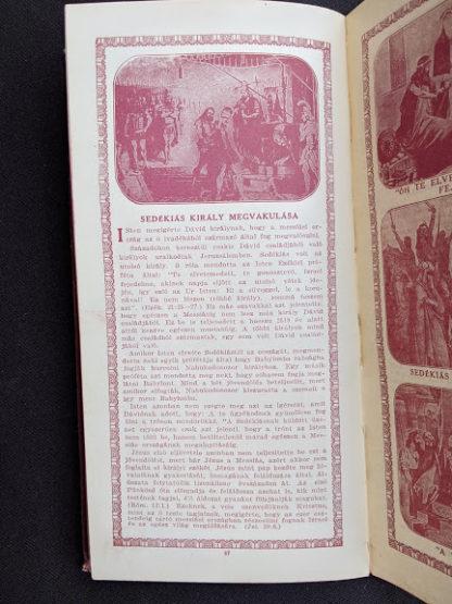 1914 Hungarian Bible - A SZÁZADOK LATKÉPE VAGY - A TEREMTÉS MÜVE KÉPEKBEN - page 47