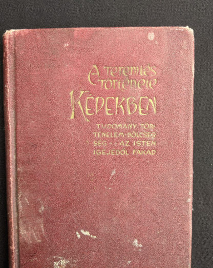 1914 Hungarian Bible - A SZÁZADOK LATKÉPE VAGY - A TEREMTÉS MÜVE KÉPEKBEN - title up close