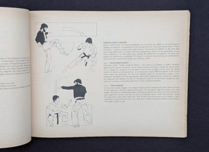 Dodges and Invasions - 1975 The Beginners Guide to KUNG-FU by Felix Dennis & Paul Simmons - First Printing