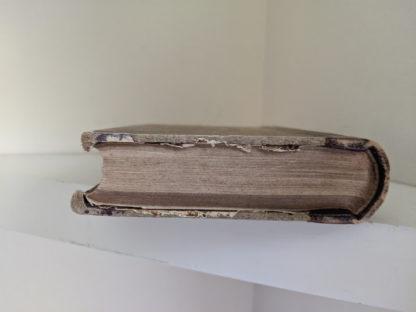 Foot edge of textblock on a 1870 copy of Sämtliche Werke - Heinrich Heine - German Book
