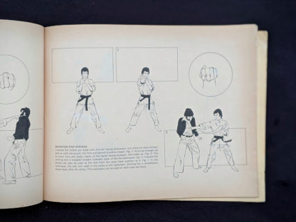 Inverted Fist strikes in a 1975 copy of The Beginners Guide to KUNG-FU by Felix Dennis & Paul Simmons - First Printing