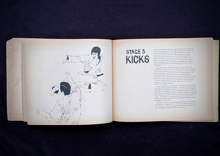 Kicks - 1975 The Beginners Guide to KUNG-FU by Felix Dennis & Paul Simmons - First Printing