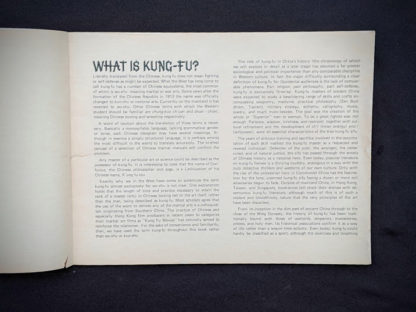 What is Kung-Fu- 1975 The Beginners Guide to KUNG-FU by Felix Dennis & Paul Simmons - First Printing