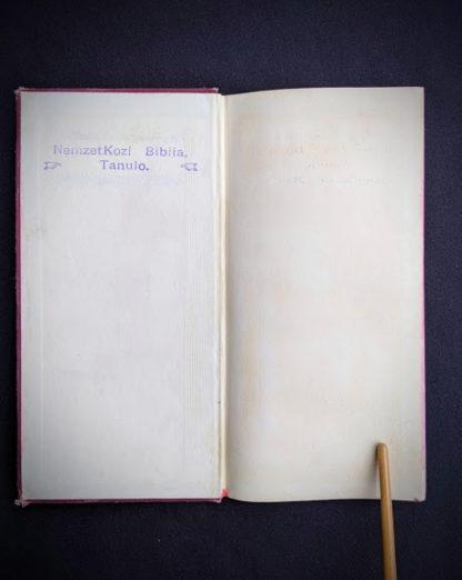 front pastedown and endpaper - 1914 Hungarian Bible - A SZÁZADOK LATKÉPE VAGY - A TEREMTÉS MÜVE KÉPEKBEN