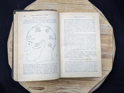illustration of Emotive Faculties -1895 The Peoples Common Sense Medical Adviser by R.V. Pierce M.D.