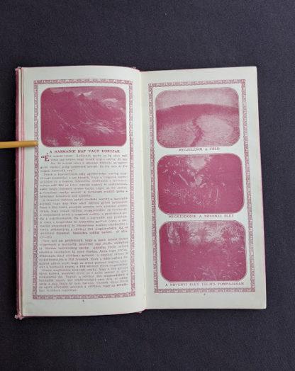 pages inside a 1914 Hungarian Bible - A SZÁZADOK LATKÉPE VAGY - A TEREMTÉS MÜVE KÉPEKBEN