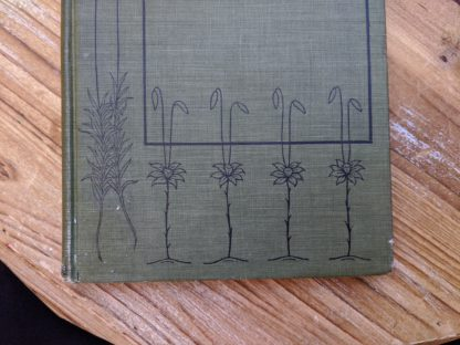 Front cover up close - 1900 copy of Mosses with a Hand-Lens - A Non - Technical Handbook of the More Recognized Mosses of the North-Eastern United States - By A J Grout