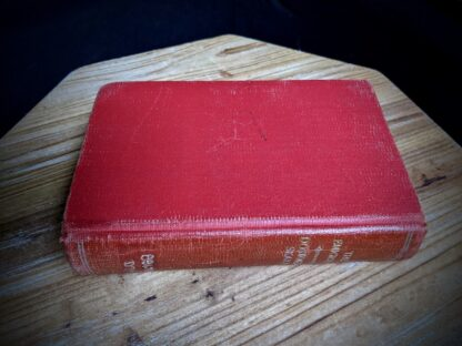 aerial view of spine and backside of the book - 1916 The Emigrant by Dostoieff Skaya