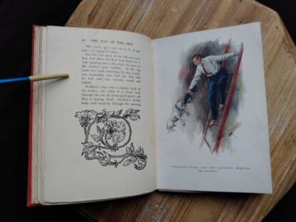 colour illustration inside a 1904 copy of The Day of the Dog by George Barr McCutcheon - First Edition