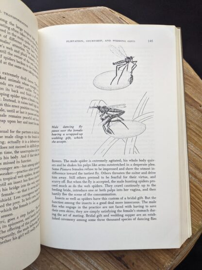 sex with insects - 1965 The Sex Life of the Animals by Herbert Wendt - First Printing